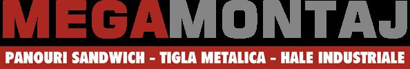 Logo Megamontaj